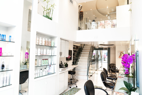 Businness For Sale Mauro Hair Studio: 421 N Rodeo Drive