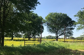 Ranch Land/ Pasture For Sale: W Fm 44
