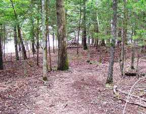 Lots And Land Sold: Pine Log Dr