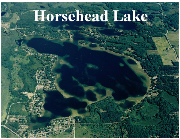 Horsehead Lake MI Homes For Sale Coldwell Banker Lakes Realty - Pretty lake map