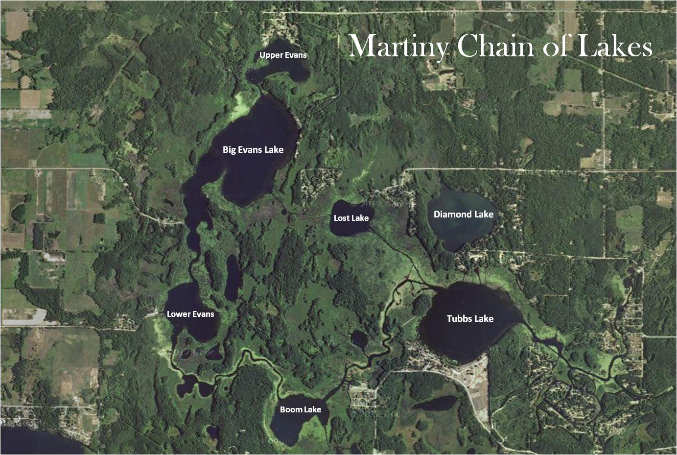 Mecosta Michigan Map.Martiny Chain Of Lakes Mi Real Estate Coldwell Banker Lakes Realty