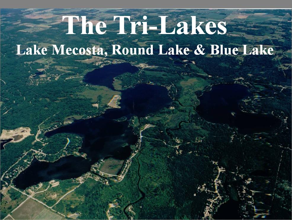 Mecosta Michigan Map.Tri Lakes Mi Homes For Sale Tri Lakes Mi Real Estate Coldwell