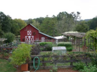 Farms Homes for Sale in Rutherford County