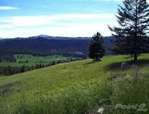 Homes for Sale in Railroad Flat, CA