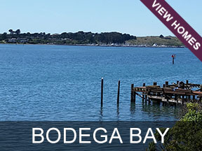 Bodega Bay Real Estate