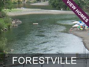 Forestville Real Estate
