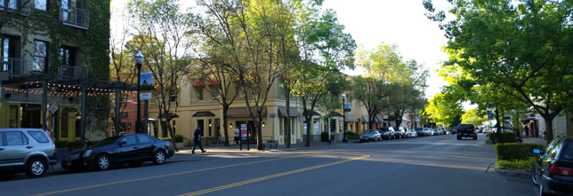 Healdsburg Real Estate