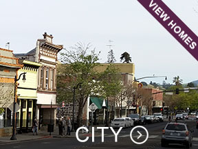 Sonoma County City Real Estate