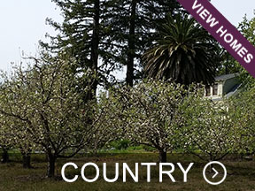 Sonoma County Country Real Estate