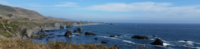 Sonoma Coast Real Estate