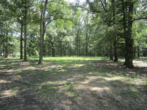 Lots and Land For Sale: 2459 Hwy. 35 E
