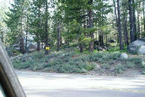 Lots And Land Closed: 13020 Donner Pass Rd