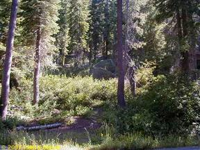 Lots And Land For Sale: 15721 Conifer Drive