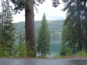 Residential Lots & Land For Sale: 13244 Donner Pass Road