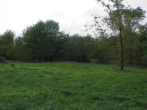 Henderson MD Lots And Land Closed: $39,000