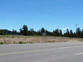 Lots And Land Active: 2891 Hwy 260