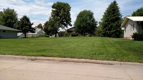 Residential Lots & Land For Sale: Elm Street