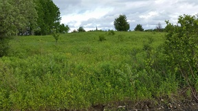 Lowville NY Residential Lots and Land For Sale: $47,500 MAKE AN OFFER