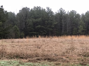 Louisville MS Lots and Land For Sale: $30,000 9.67 Acres