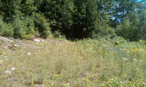Thurman NY Lots And Land Active: $15,000