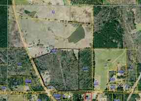 Land For Sale: Road 123 (Timberland)