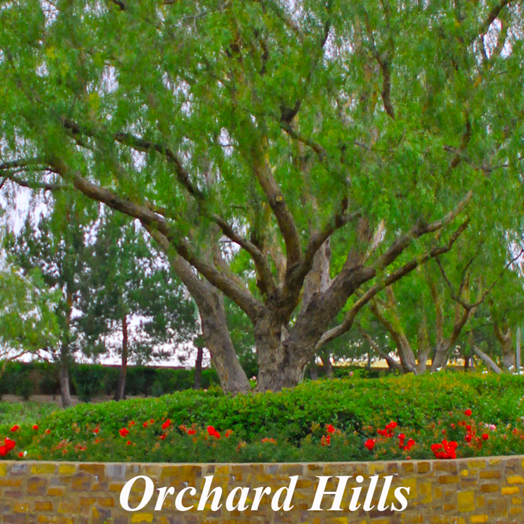 Orchard Hills Homes