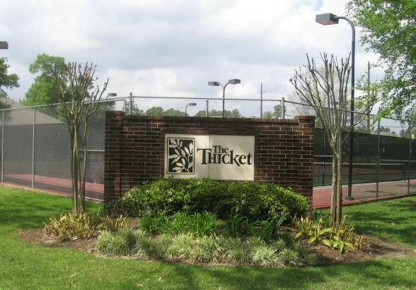 The Thicket in Spring TX