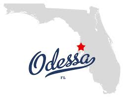 Homes for Sale Odessa Fl