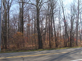 Potterville MI Lots and Land Sold: $14,900