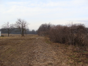 Bellevue MI Lots and Land Sold: $109,900