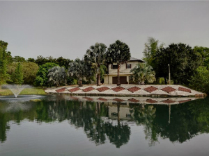 Homes for Sale in Fellsmere, FL