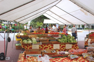 Farmers Market is every Sunday in Celebration Florida