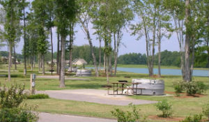 Homes for Sale in Longs, SC