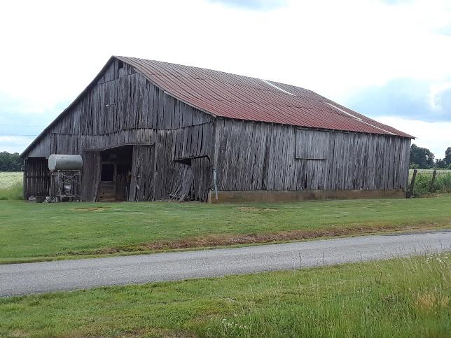 Farm Land for Sale