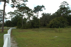 Bushnell FL Residential Lots & Land Sold: $65,000
