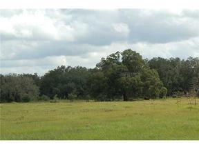 Bushnell FL Residential Lots & Land Sold: $65,000