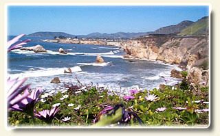 Pismo Beach Ocean View Homes and Real Estate