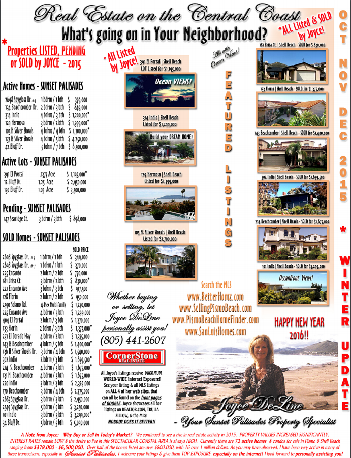 What's going on in Shell Beach - Newsletter