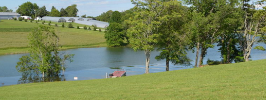 Cherokee Lake Waterfront Homes for Sale