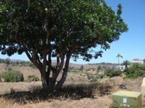 Rancho Santa Fe CA Residential Lots & Land Sold: $1,495,000