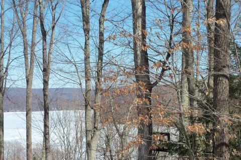 Laurel Lane on Lake Wallenpaupack - Greentown PA