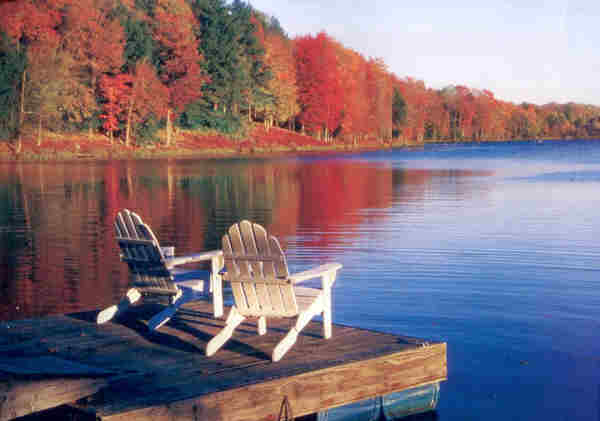 Homes for Sale in Nemanie Village on Lake Wallenpaupack PA