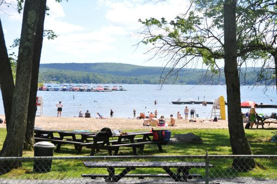 Homes for Sale in Pine Beach on Lake Wallenpaupack PA
