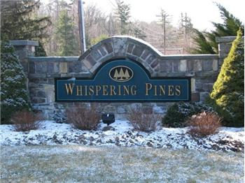 Homes for Sale in Whispering Pines Paupack PA