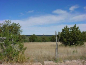 Homes for Sale in Pinon, NM