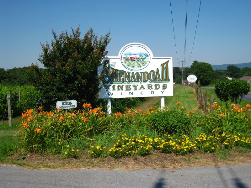 Shenandoah Vineyards.jpg