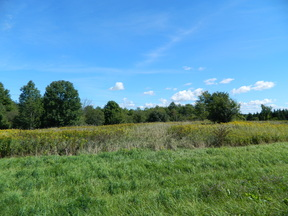 Harrisburg NY Residential Lots & Land Sold: $35,000