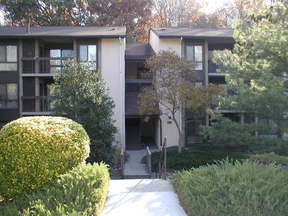 Residential Sold: 5901 Tamar Drive #11