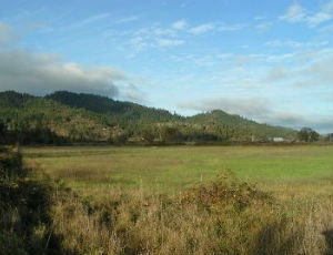 Land for Sale in Franklin County, NC