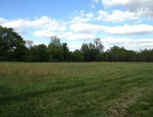 Land for Sale in Granville County, NC